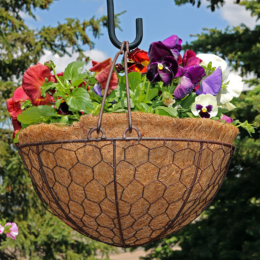 Eggshell Hanging Flower Basket with Coco Liner